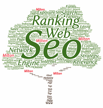 Halton Hills Ontario SEO Company and Digital Marketing Firm